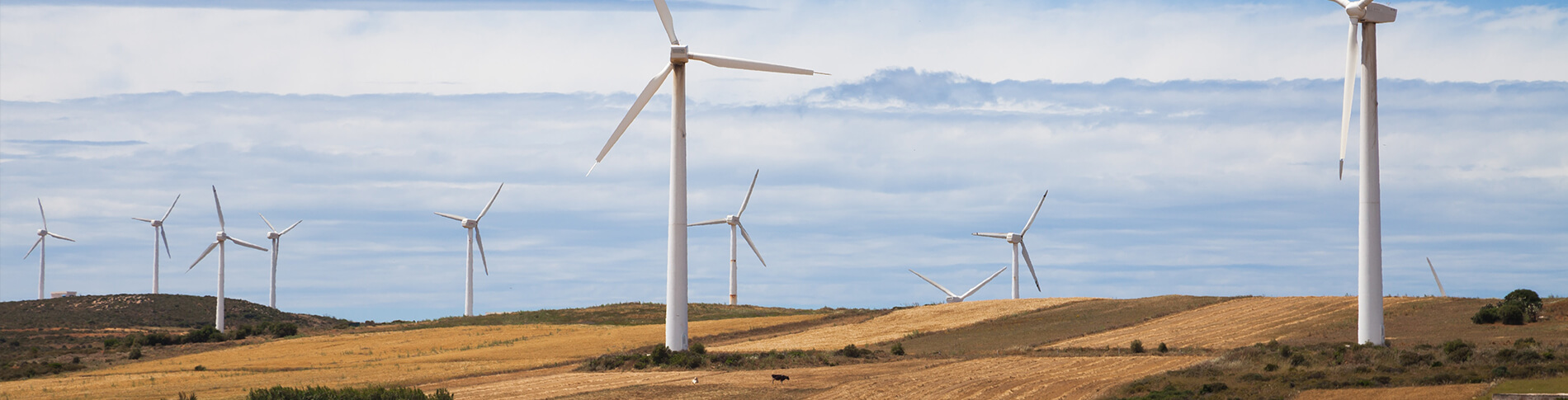 Remote control and monitoring of wind turbines